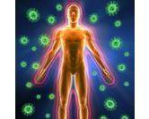 Les liens entre système immunitaire et l'assiette