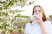 Huiles essentielles et allergies saisonnières
