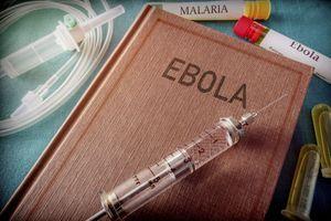 Ebola en RDC: l'utilisation du deuxième vaccin annoncée pour novembre