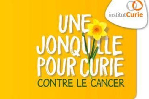 Une jonquille pour curie : première journée de lutte contre le cancer