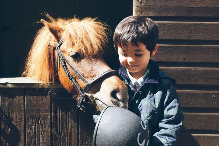 Equitation : en selle sur mon poney