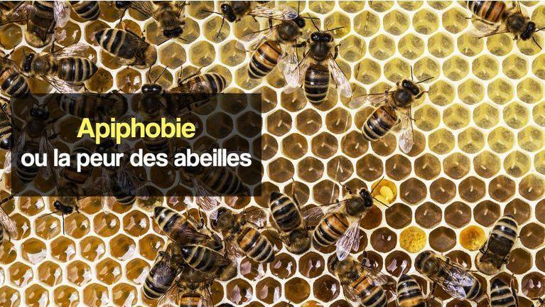 apiphobie peur des abeilles