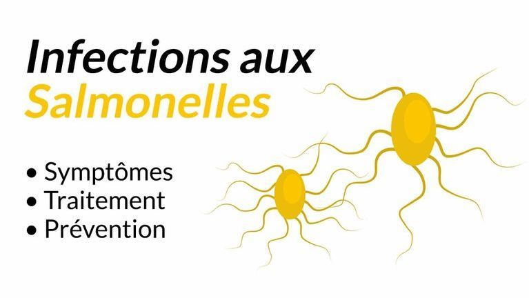 infection salmonelles