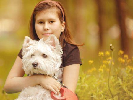 Comment choisir un chien en bonne santé