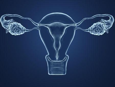 Les inducteurs d'ovulation en 10 questions