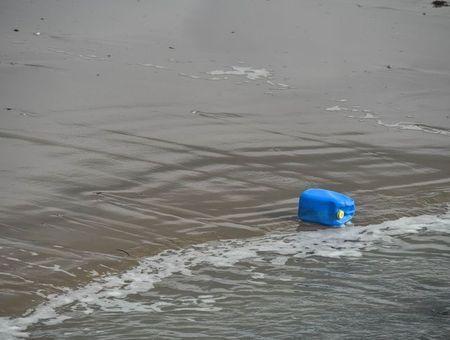 Gare aux polluants dans le poisson !
