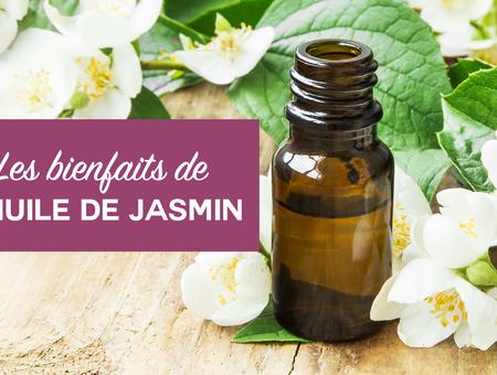 Beauté : les bienfaits de l'huile de jasmin