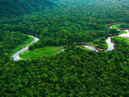 Journée de la Terre : 4 résolutions vertes