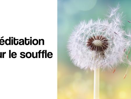 Méditation sur le souffle (4 min)