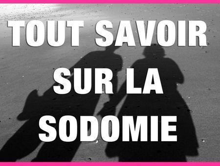 La sodomie (Anne de Kervasdoué)