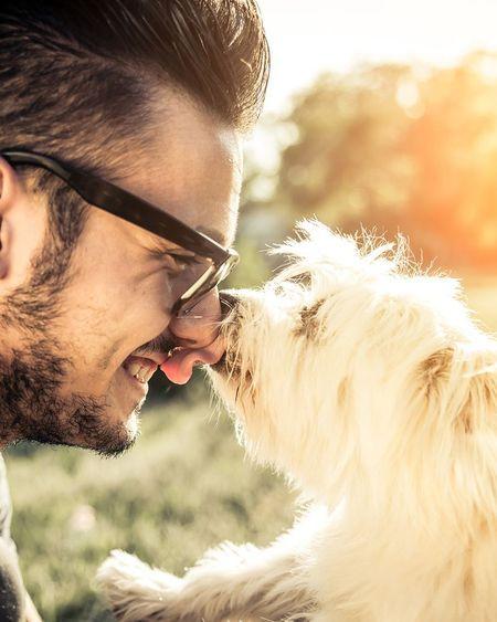 Confinement : les Français qui ont un chien l'ont mieux vécu