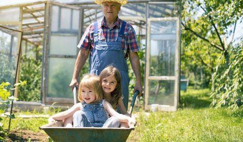 Mercredi 26 septembre sera la première Journée Nationale des Grands-Parents et des Petits-Enfants.