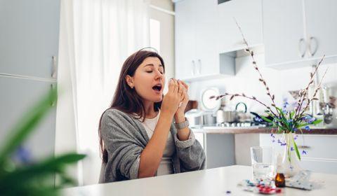 Les principales allergies de la maison