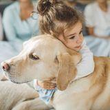 Le processus d'identification de l'enfant grâce à l'animal de compagnie