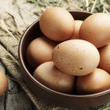 Allergie aux œufs
